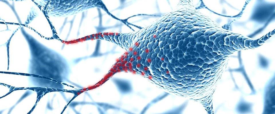 Terapia <strong>Neural</strong>